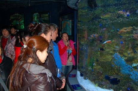"""参观""""海底世界"""" 了解生物多样性"""